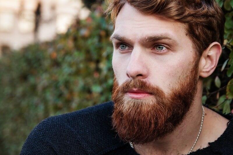 Red-Hair-Greens-Redhead-Beard-Man-Red-Beard-1848452.jpg